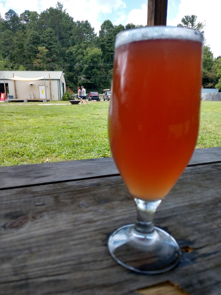 A blueberry saison (beer) in the backyard of Turgua Brewing.